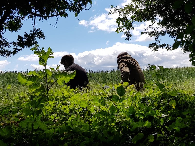 Outdoor Skills for Youth & Community Groups | Rewilding Adventure