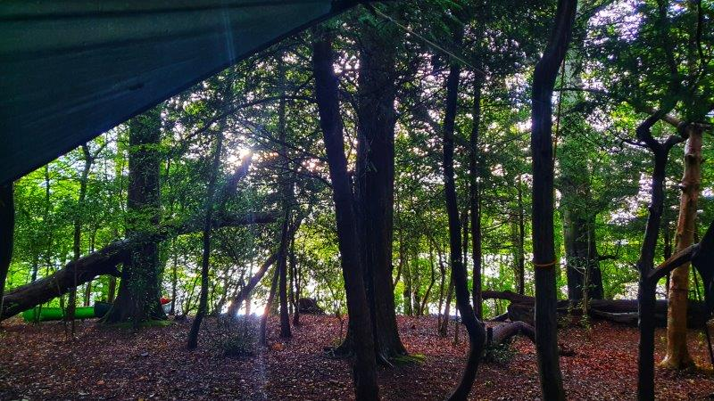 Bushcraft Rewilding Forest School Tarp Hammock