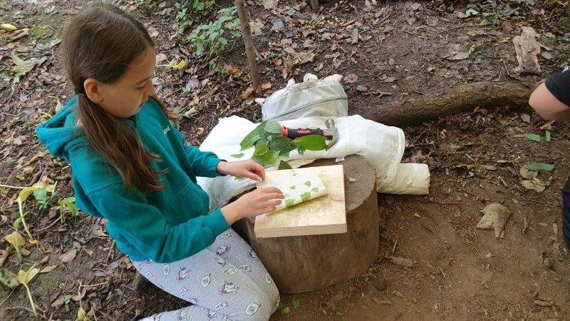 Hapa Zome Forest Forest School Bushcraft