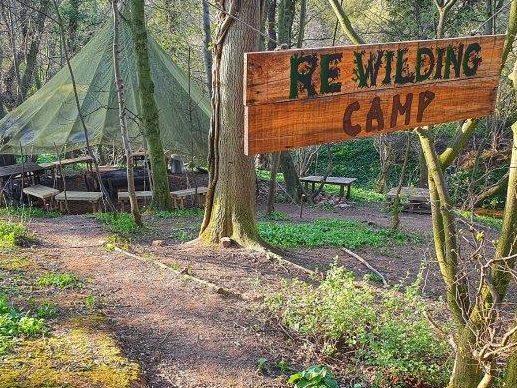 Rewilding Camp Forest School