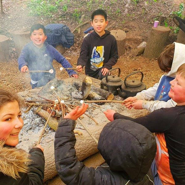 WAD Cover Campfire Children Forest Woodland